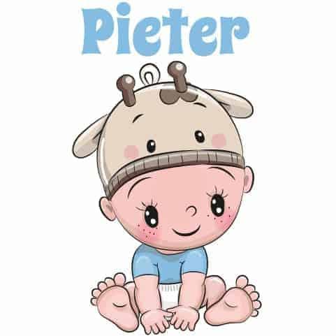 Geboortesticker jongen type Pieter
