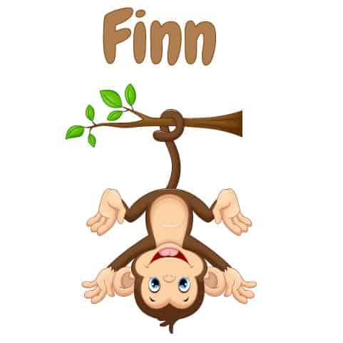 Geboortesticker jongen type Finn
