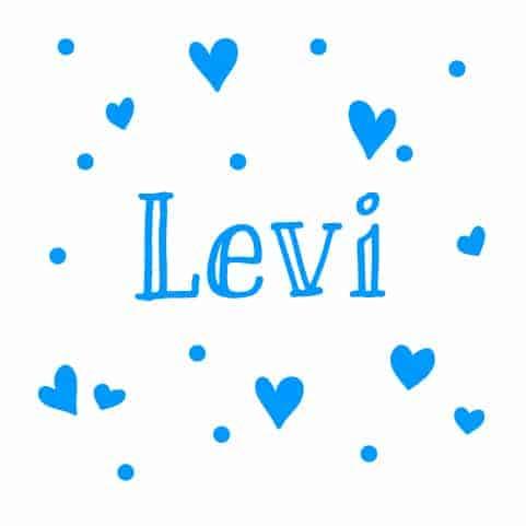 Geboortesticker Jongen type Levi
