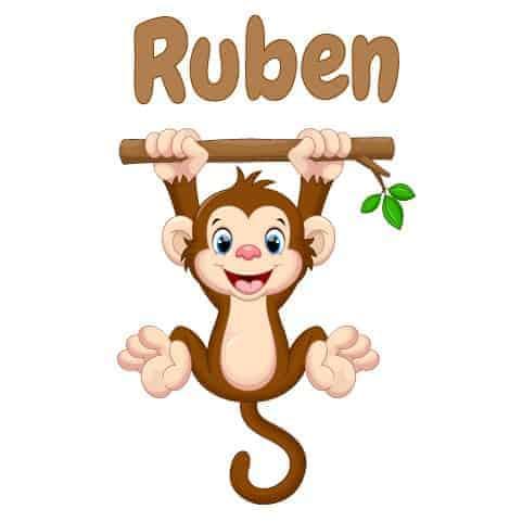 Geboortesticker Jongen type Ruben
