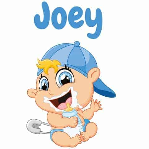 Geboortesticker Jongen type Joey