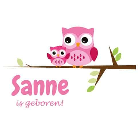 Geboortesticker meisje type Sanne